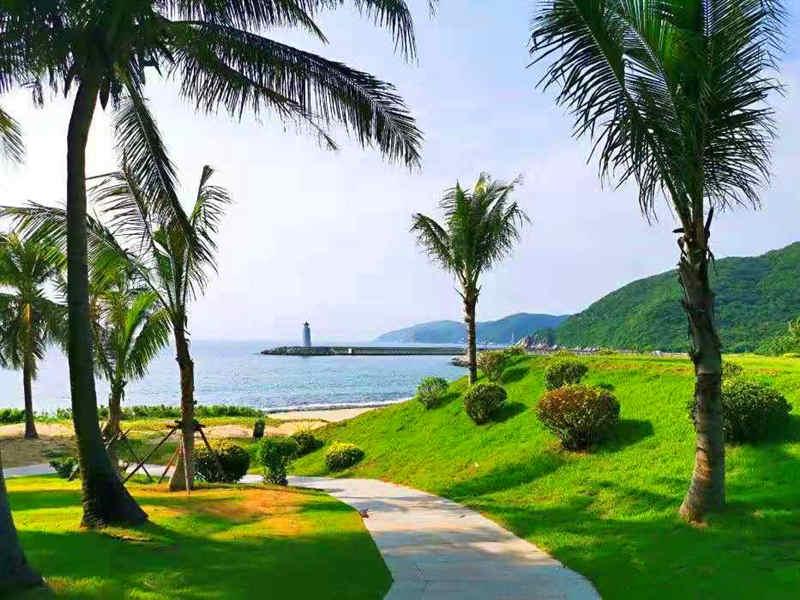 舒心海南】长沙-三亚双飞5日,湖南自组,西岛+南山+天涯海角+热带植物园
